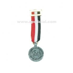 Medalla miniatura Irak