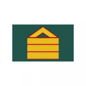 Galleta tela Sargento 1º polo nuevo Tráfico